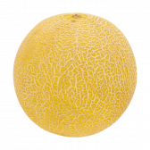 Jumbo Galia melon (at your own risk)