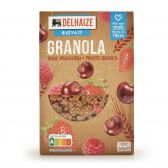 Delhaize Granola met rode vruchten