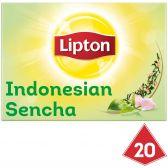 Lipton Sencha groene thee piramides
