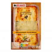 Delhaize Kip-broccoli ovenschotel (voor uw eigen risico, geen restitutie mogelijk)