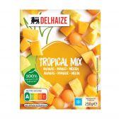 Delhaize Tropisch fruit mix (alleen beschikbaar binnen de EU)