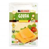 Delhaize Jonge Gouda kaas plakken klein