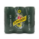 Schweppes Gember ale 6-pack