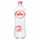 Spa Sparkling spring water grapefruit large
