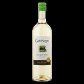 Gato Negro Sauvignon blanc Chile white wine