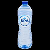Spa Reine natural spring water