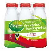 Campina Whole milk 6-pack
