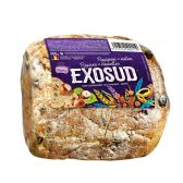 Exosud Raisin bread (at your own risk, no refunds applicable)