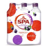 Spa Touch of blackcurrant 6-pack
