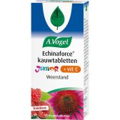 A. Vogel Echinaforce junior vitamine C kauwtabletten